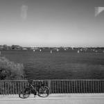 Hamburg_City_Tour015