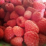 fresh Raspberries from Today`s Farmer`s Market